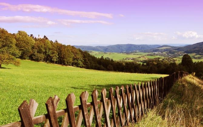 Старый забор