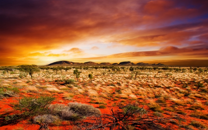 Красивая пустыня