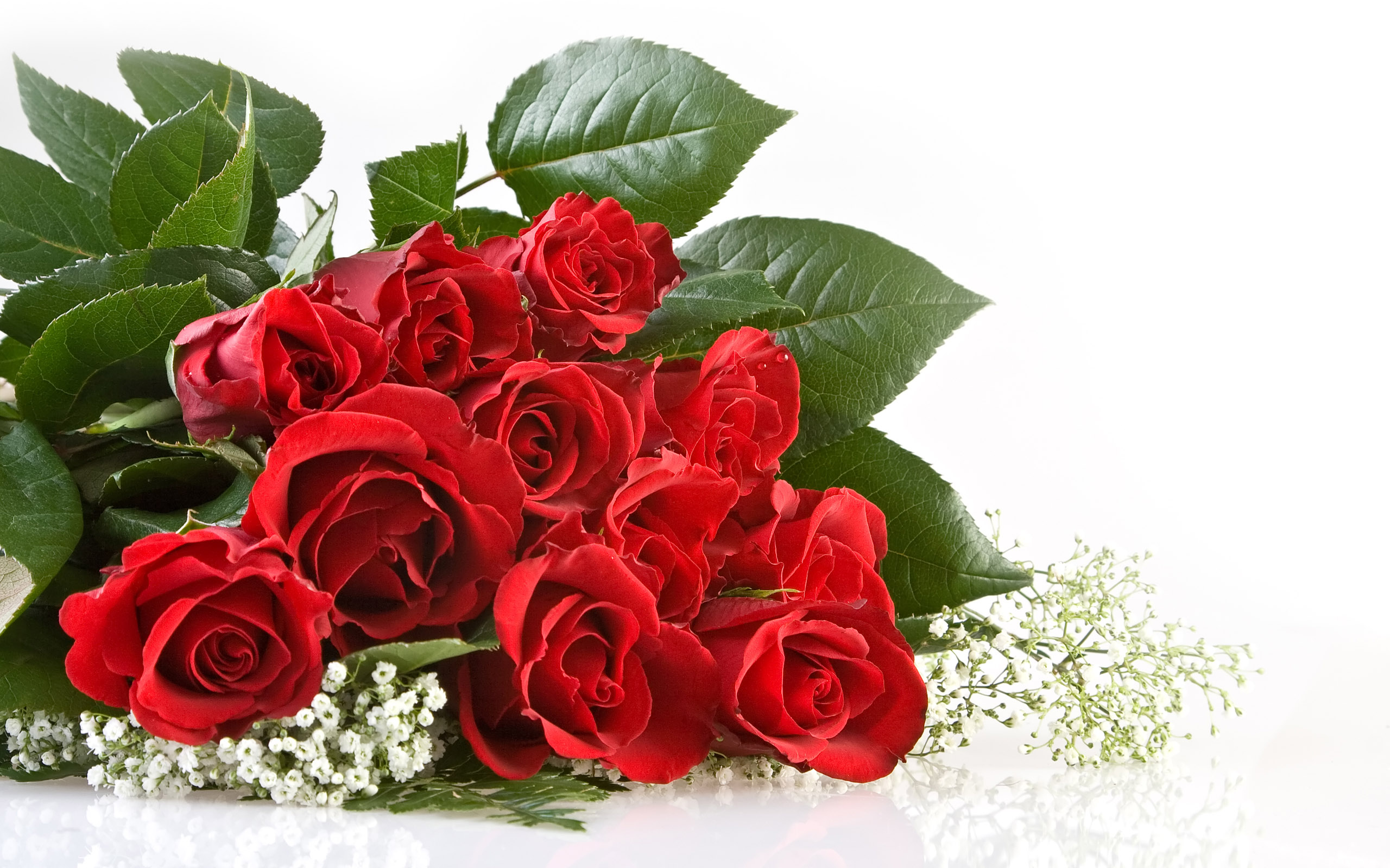 Картинка На Рабочий Стол Красные Розы