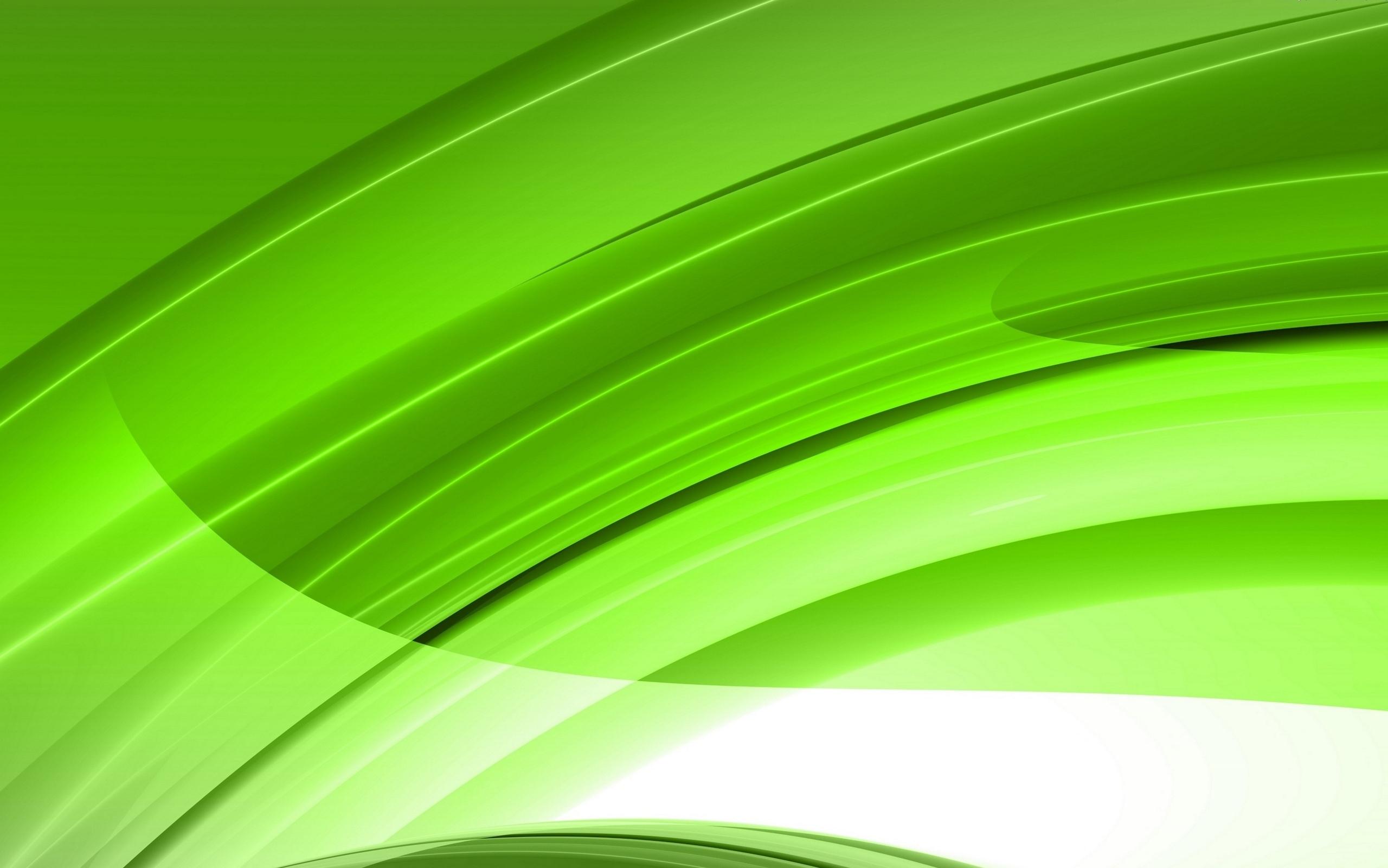 Зеленые листья обои 6