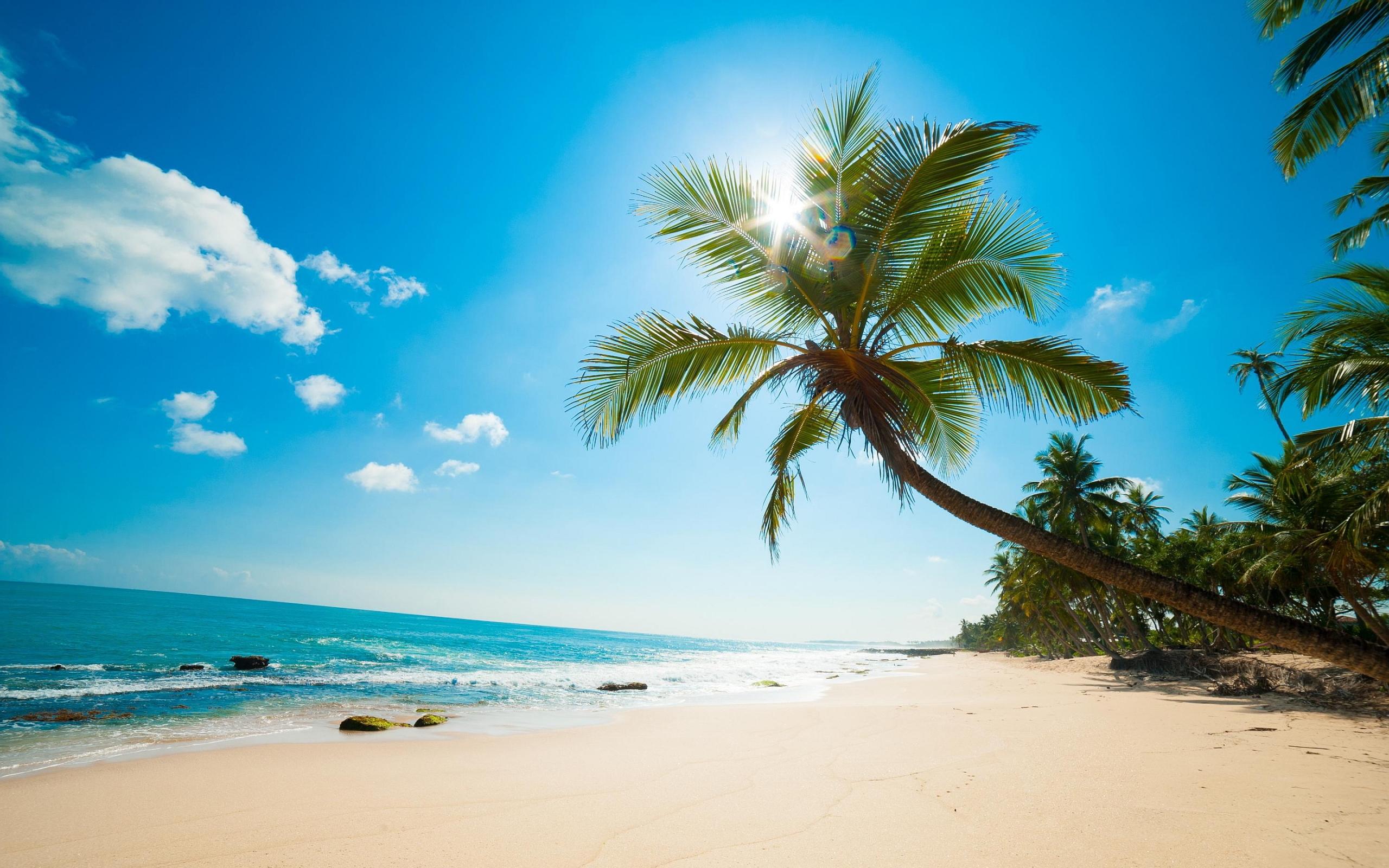картинки море.солнце. пляж
