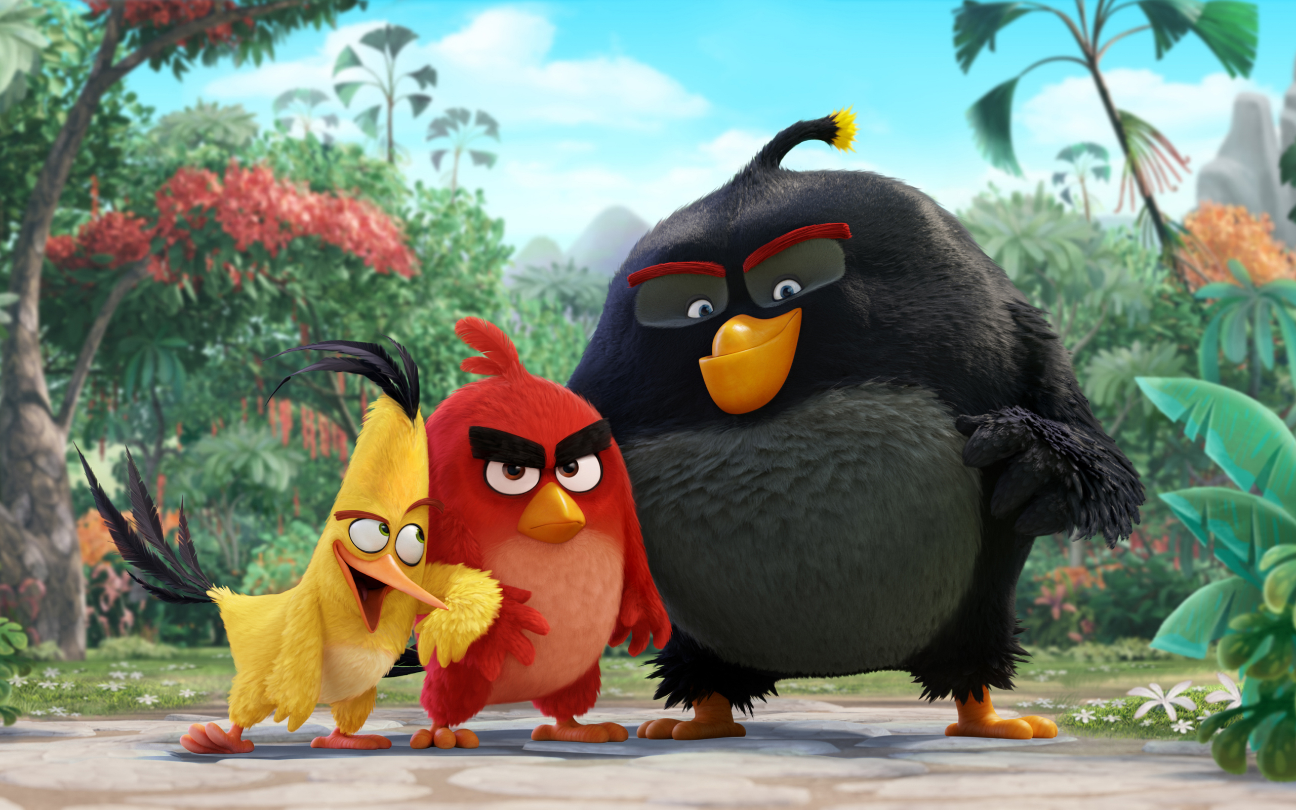 Птенец angry birds в кино обои для рабочего стола, картинки и фото.