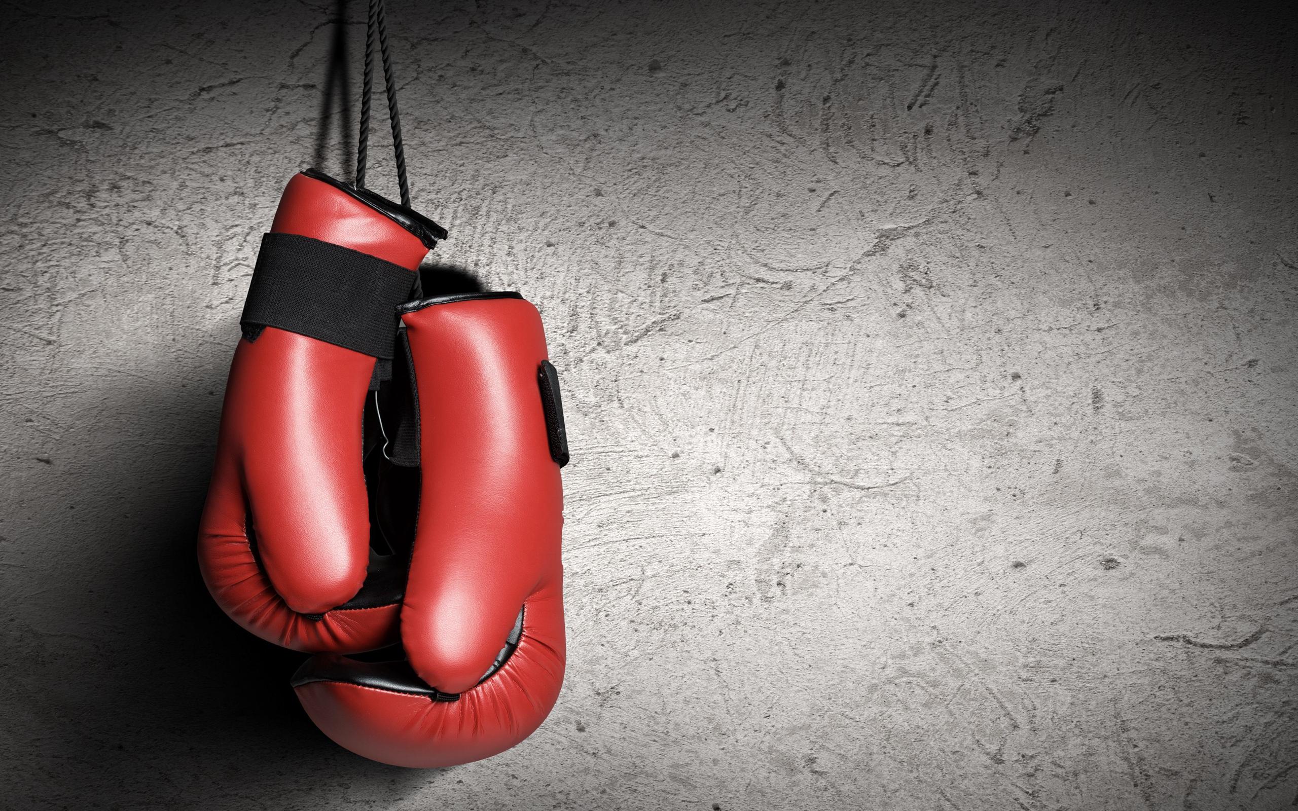 Картинки по запросу боксерские перчатки