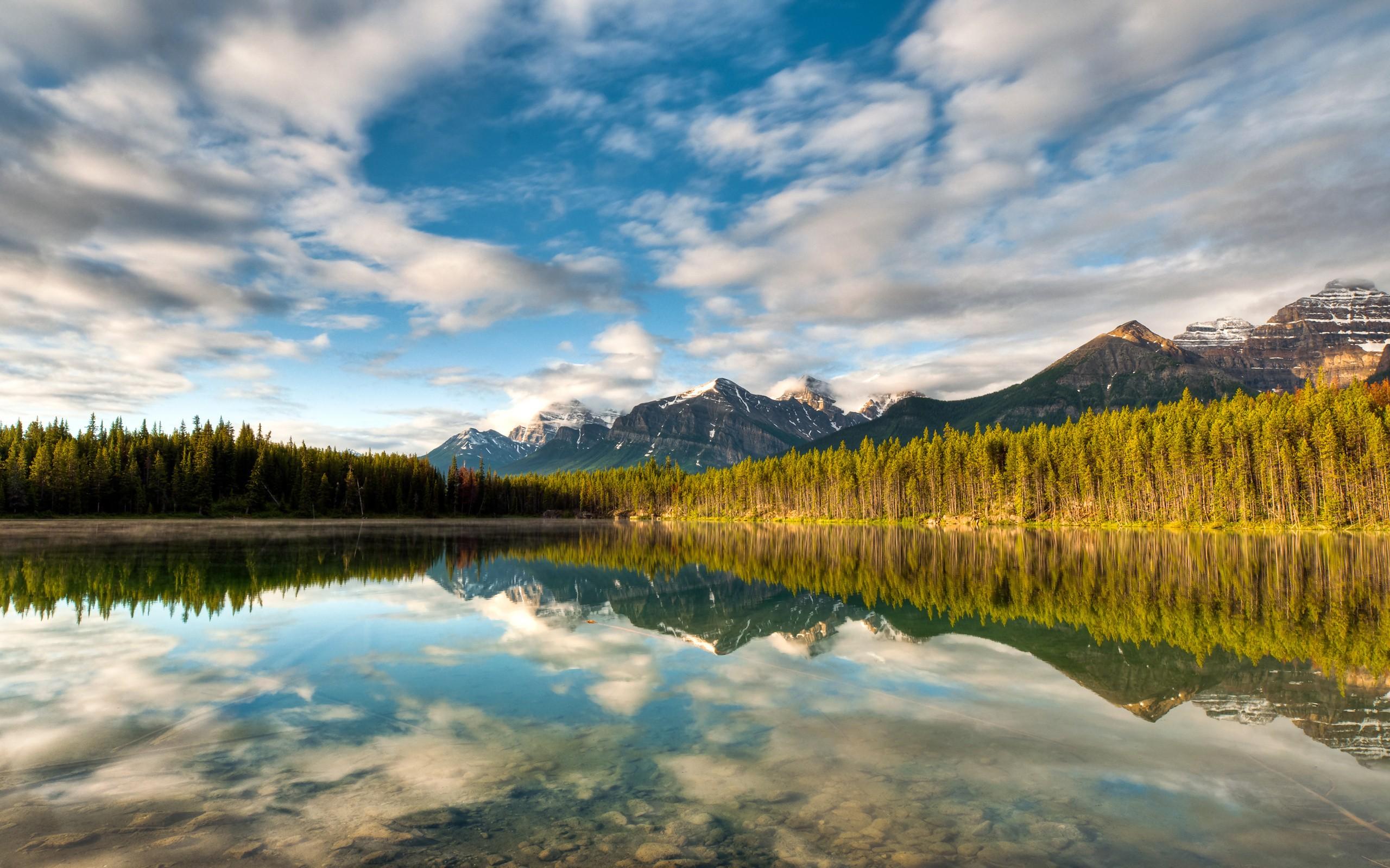 Лесное озеро обои для рабочего стола 7