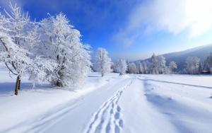 Зима обои для рабочего стола
