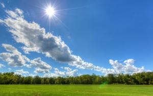 Солнечное лето