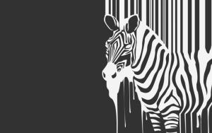 Черно-белая зебра