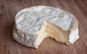 Мягкий сыр
