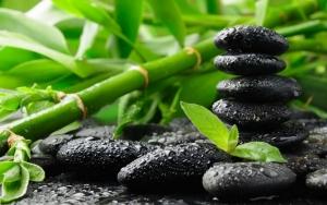 Черные камни и бамбук