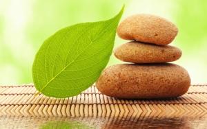 Камни и лист