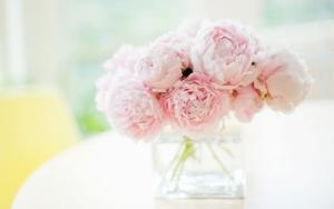 Нежно розовые пионы в вазе