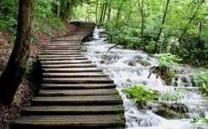 Лестница у реки