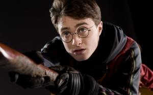 Гарри Поттер на метле