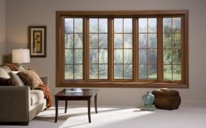 Окно с видом на лес