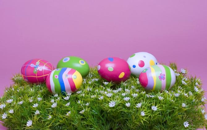 Яйца на траве