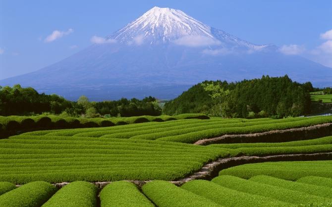 Гора Фудзи в Японии