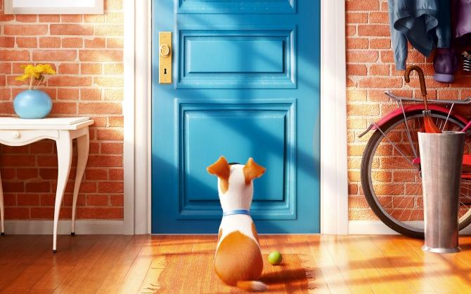 Тайная жизнь домашних животных