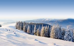 Лес и горы зимой