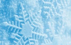 Макро зима