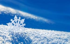 Снежинка на снегу