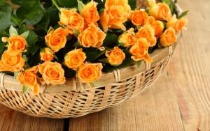 Маленькие розы