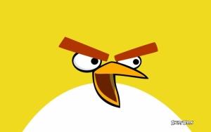 Чак - желтая птица