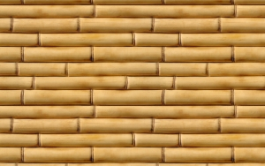 Стена из бамбука