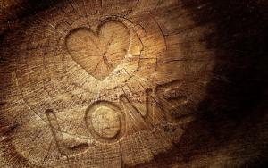 Надпись LOVE на дереве
