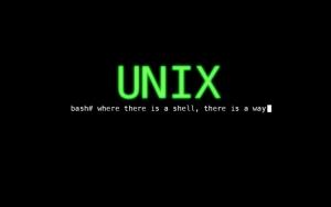 Unix bash