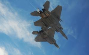 Два боевых самолета
