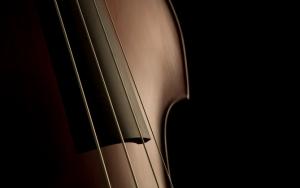 Струны скрипки