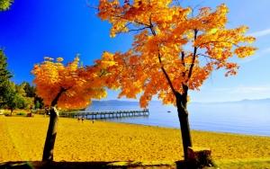 Осень у моря