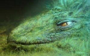 Волшебный дракон