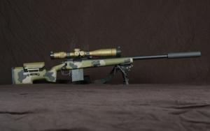 Военная снайперская винтовка