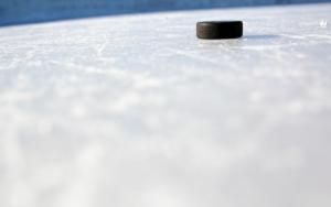 Шайба на льду