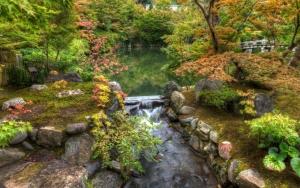 Река в живописном лесу