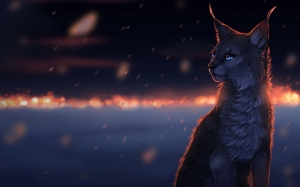 Фэнтези кот