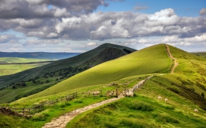 Холмы и овечки