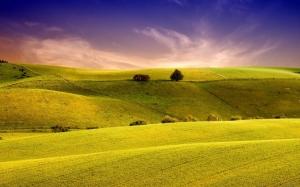 Желтые холмы