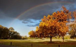 Радуга осенью