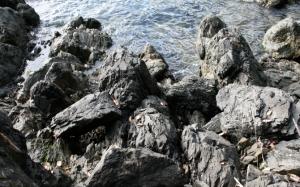 Черные скалы