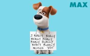 Тайная жизнь домашних животных Макс