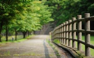 Забор в парке