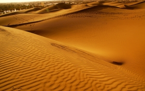 Пустыня Египта