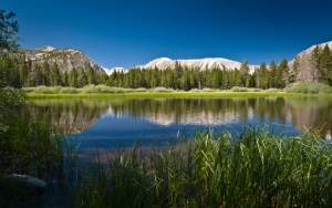 Болотистое озеро